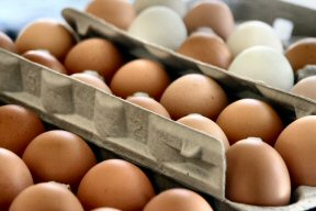 Fresh eggs, packed by hand, from a local farm.