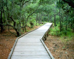 Go take a hike on Columbus Day Weekend.