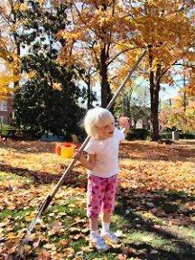 Where would she put those leaves?
