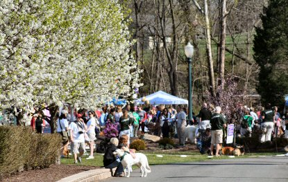 Beneath the bright sun and flowering trees Saturday at Sunnybrook Ballroom in Sanatoga, dogs and their humans gathered to join Bark For Life.